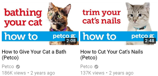 How to - Petco (cats)