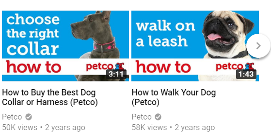How to - Petco (dogs)