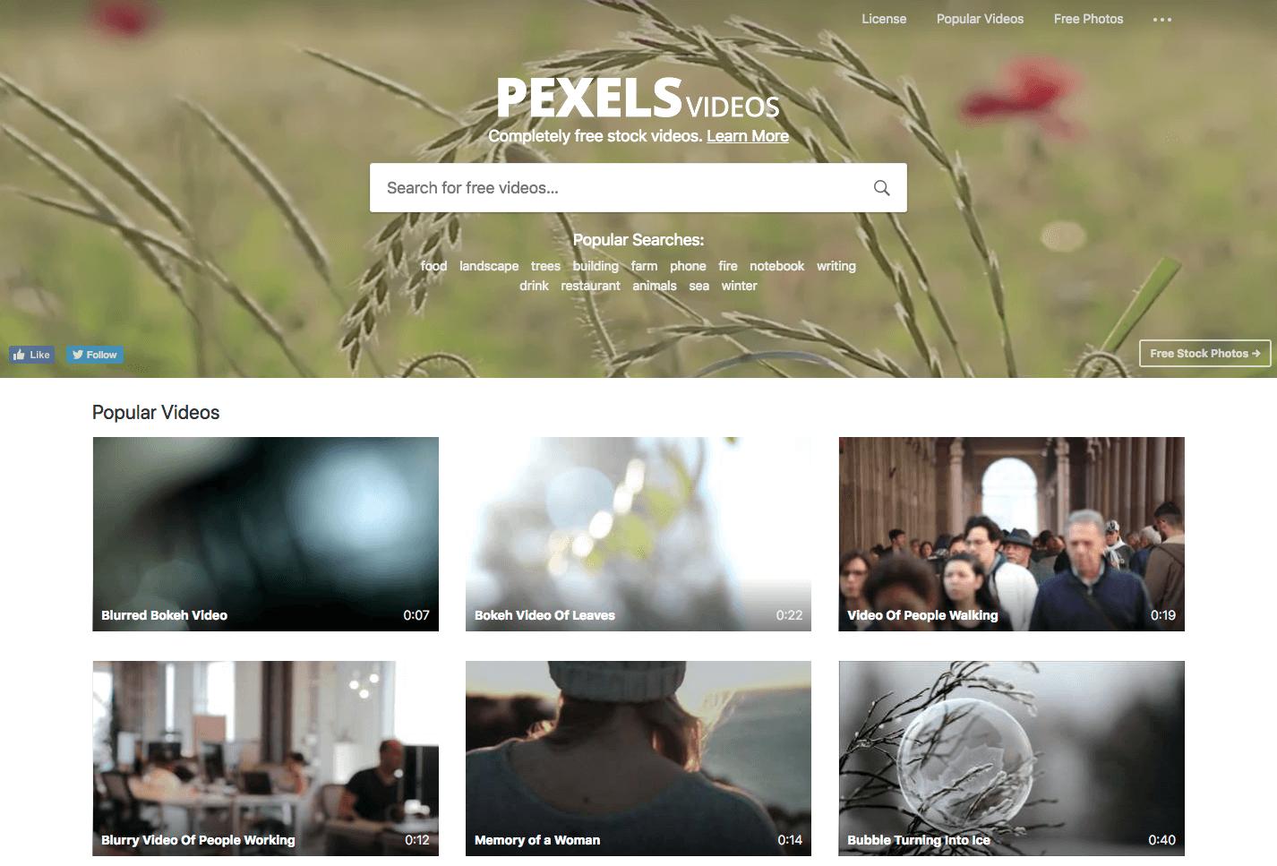 Free stock footage: Pexels