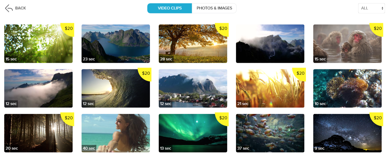 Stock video library wave.vide
