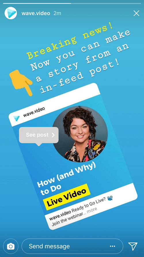 Wave.video instagram story