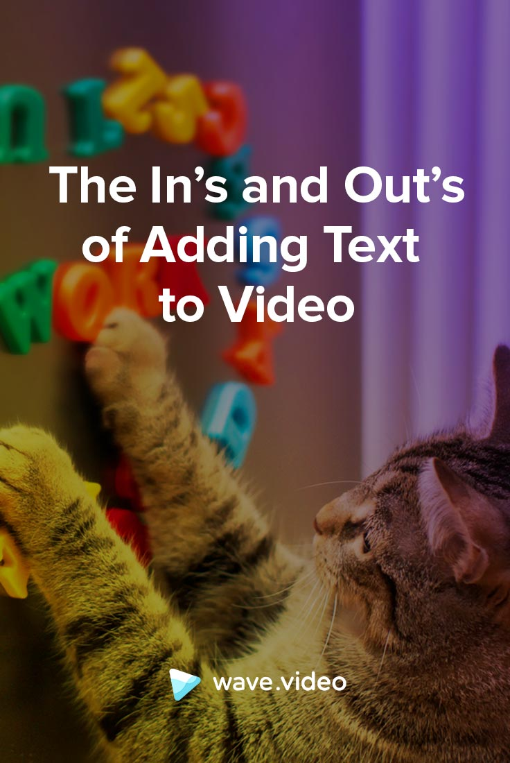 Add text to video: everything you need to know