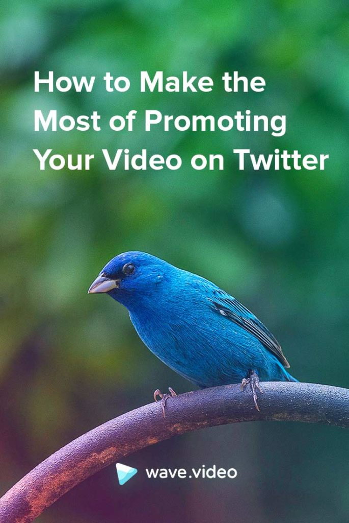 How to make the most of promoting video on twitter
