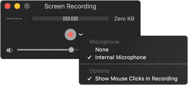 How To Screen Record On All Devices - quick time
