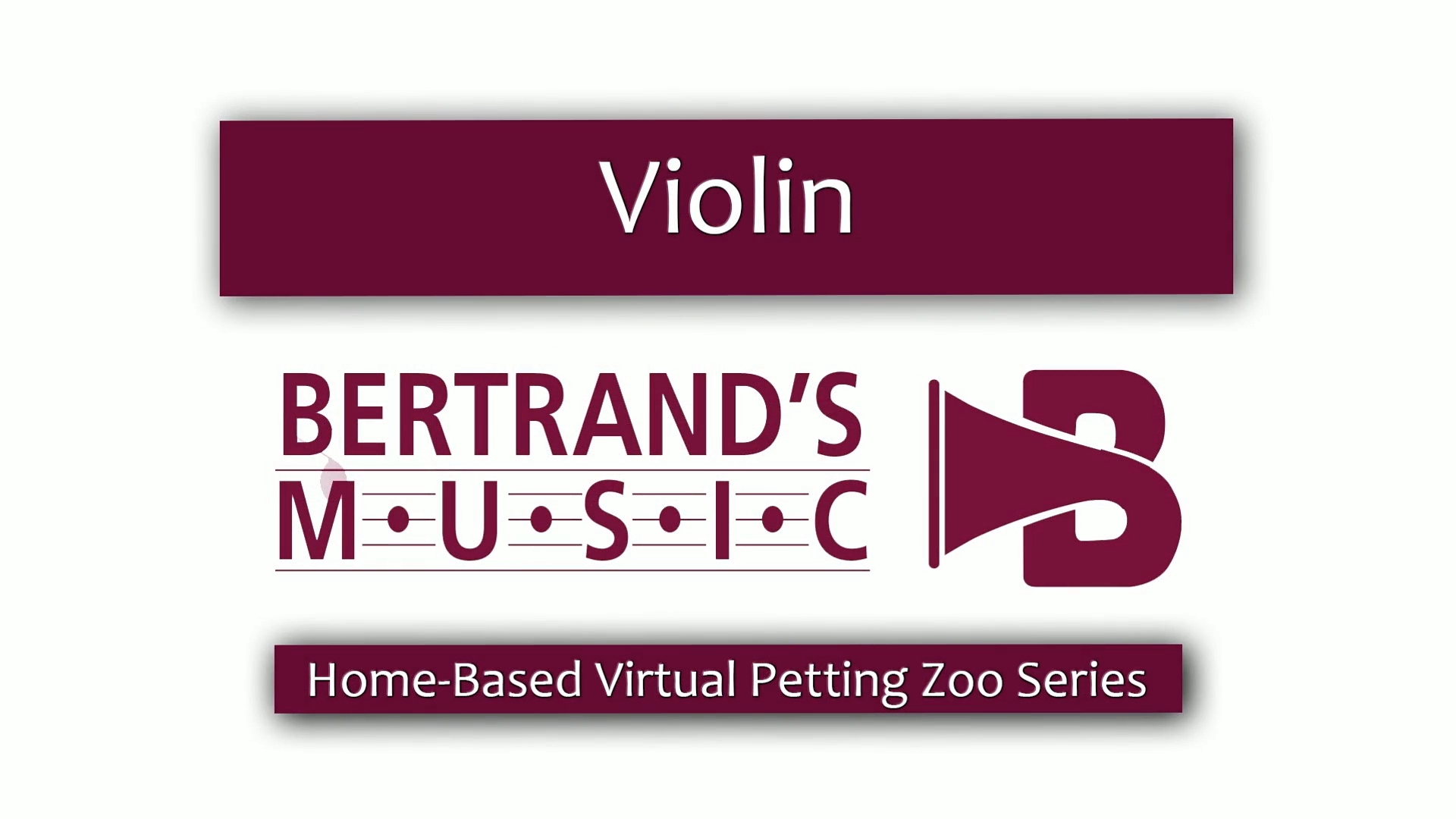 Violin Petting Zoo