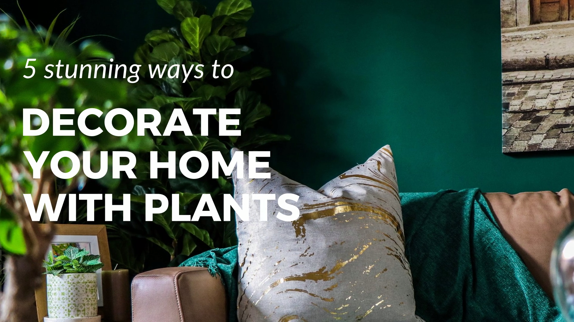 5 Ways to Decorate a Home With Plants