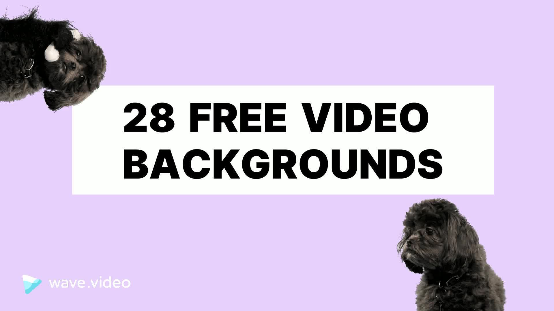 28 free backgrounds for zoom