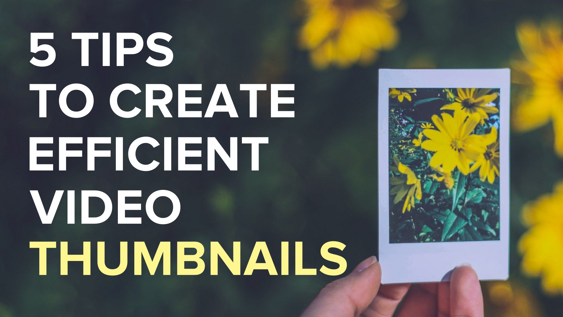 5 Tips_Thumbnails