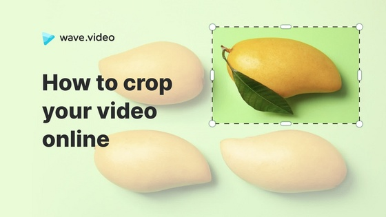 How to crop a video online