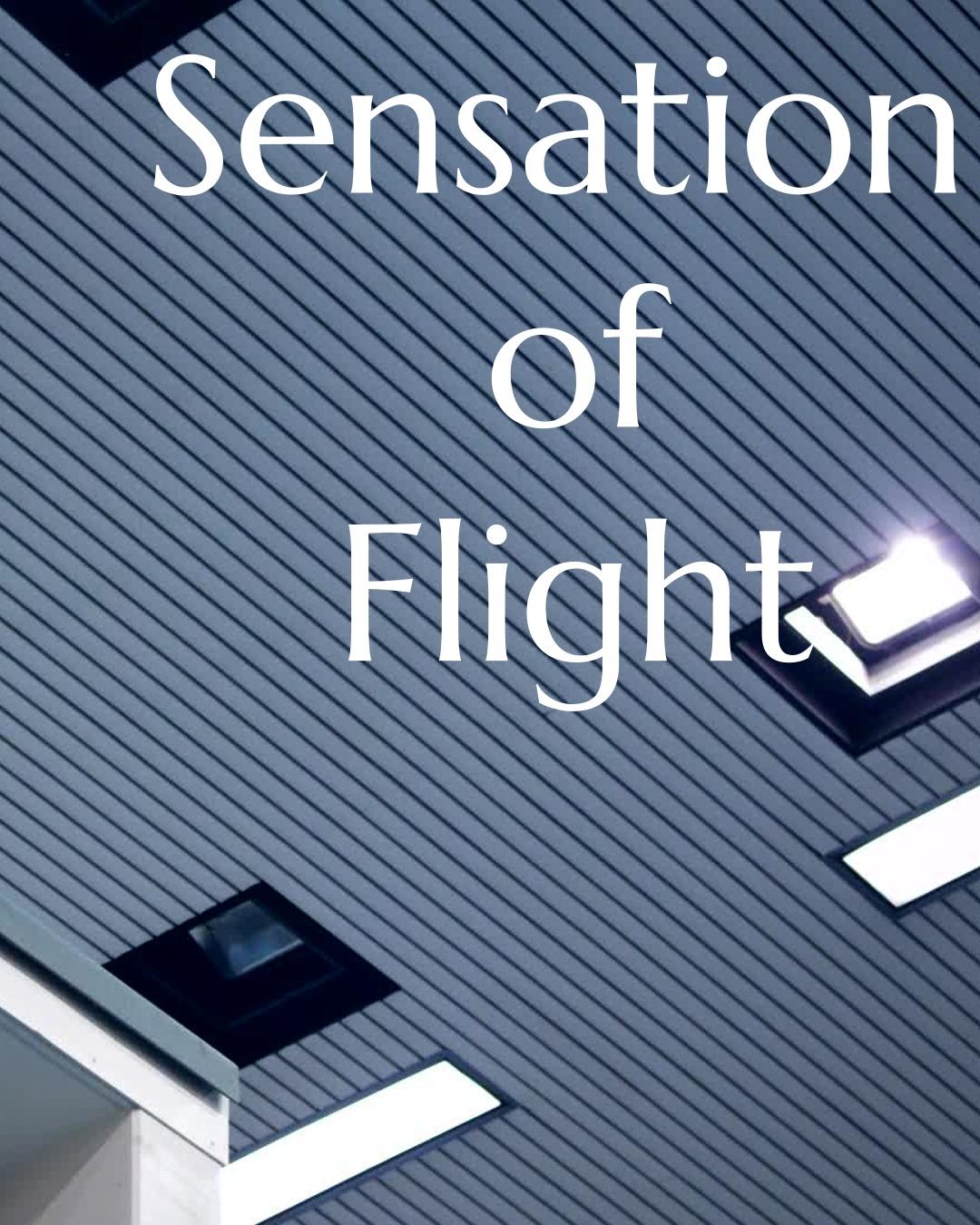 The sensation of flight